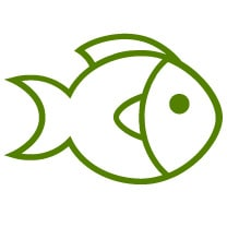 Fish Icon Drawing